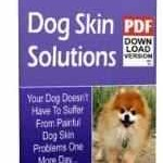 Dog Skin Solutions