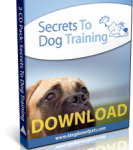 Secrets to Dog Training: Stop Dog Behavior Problems!
