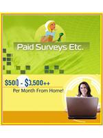 Paid Surveys Etc